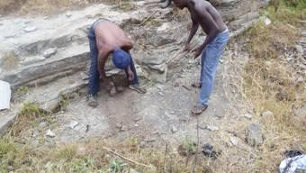LafarageHolcim hat laut NGO bis Ende 2016 Rohstoff aus handwerklichem Abbau verarbeitet. In diesen Minen in der Region Harugongo im Südwesten von Uganda arbeiten Kinder und Jugendliche mit.