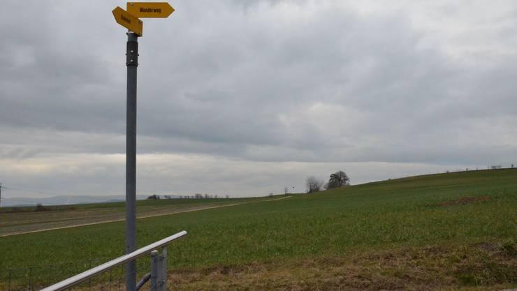 Das Gebiet Ämet (im Hintergrund) soll so überbaut werden, dass die Wege in die Natur nicht gestört werden.