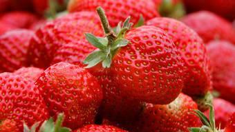 Erdbeeren (Archiv)
