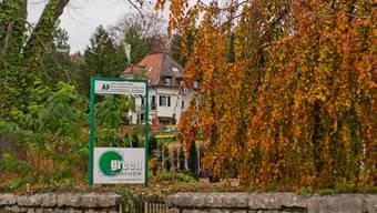Als Baumschulareal wird das Gelände der Hauenstein Baumschulen AG bezeichnet, die derzeit noch mitten im Dorf liegt (Ecke Bibersteinerstrasse/Alte Stockstrasse), in absehbarer Zeit aber an einen anderen Standort zügelt.