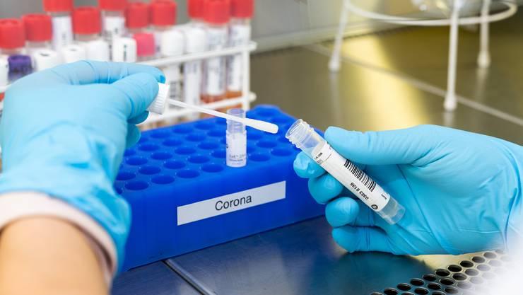 Die Zahl der Coronatests soll in Österreich massiv hochgeschraubt werden.