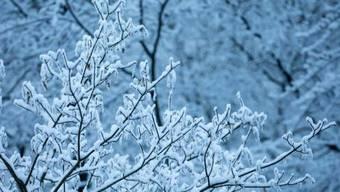 Sehr winterliche Temperaturen erfährt die Schweiiz im Janaur 2021. (Symbolbild)