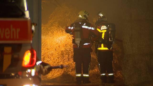 Feuer zerstört 20 Tonnen Heu und Stroh