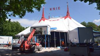 Zirkus Knie: Impressionen vom Aufbau in Klingnau