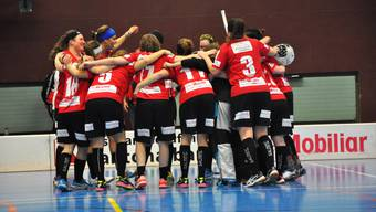 Die Unihockey-Frauen von Basel Regio feiern den Ligaerhalt.