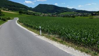 Selbstunfälle im Aargau