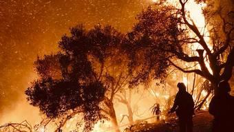 Das Feuer hält die Einsatzkräfte seit mehr als zehn Tagen in Atem.
