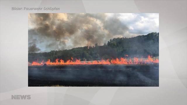 Hitze löst weiteren Feldbrand aus