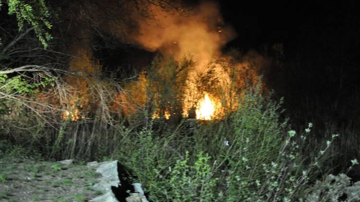 Brand auf dem Aareinseli in Selzach