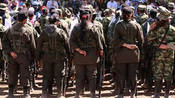 FARC-Guerilla-Kämpfer und -Kämpferinnen in Kolumbien (Aufnahme von Anfang Februar).