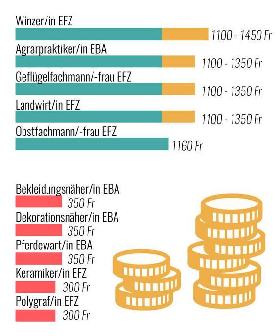 Eine ausführlichere Liste zu Lohnempfehlungen während der Lehre hat yousty.ch hier zusammengestellt.