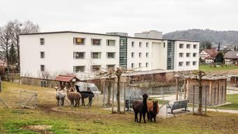 In den Altersheimen in Hägglingen und Dottikon stehen derzeit einige Zimmer leer. Ein neuer Heimleiter soll dafür sorgen, dass sie bald wieder belegt sein werden.