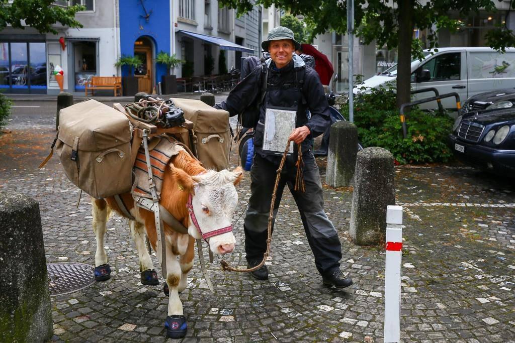 Gaëtan Dubler und Ochse Léo bei der Ankunft in Rorschach. (© Raphael Rohner)