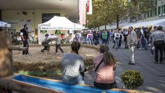 Showschwingen des Schwingklubs Olten-Gösgen an der diesjährigen MIO; ein populäres Element der Messe.