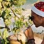 Raoul Petretta schlürft mit Weihnachtsmannmütze eine Kokosnuss.
