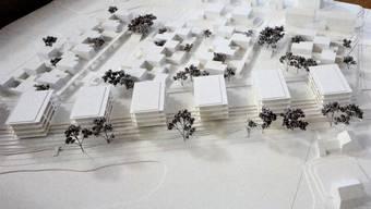 Modell der Stöcklimatt-Überbauung. Die erste Etappe umfasst die drei Mehrfamilienhäuser rechts und die Parzellen dahinter. Die zweite Etappe mit vier Mehrfamilienhäusern (das siebte links ist nicht auf dem Bild) und weiteren Parzellen wird erst in kommenden Ortsplanungsrevisionen ein Thema sein.