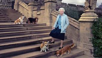 Seit 67 Jahren sitzt Königin Elizabeth II in Grossbritannien auf dem Thron. Das Bild zeigt sie auf Schloss Windsor gemeinsam mit ihren Hunden Willow, Vulcan, Candy und Holly. Bild: Annie Leibovitz/AP (20. April 2016)