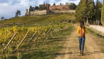 Eine Weinreise buchen – machen nur wenige. (Symbolbild)