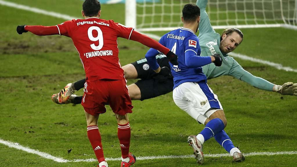 Die Entscheidung in Gelsenkirchen: Robert Lewandowski erzielt das 2:0 für die Bayern gegen Schalke.