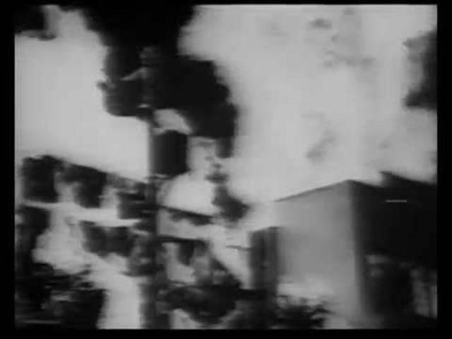 «Züri brännt» hiess es Anfang der 1980er-Jahre