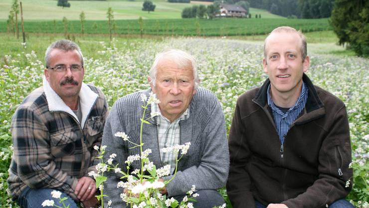 von links: Nussbaum-Bauer Armin Lang, Imker Alois Leisibach und Simon Gisler von der Hochstamm Seetal AG.