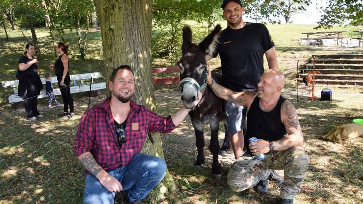 «Hier haben sich vier Esel gefunden», scherzen die Musiker Trauffer (links) und Gölä (rechts) mit Radio-Argovia-Moderator Christian Bisang.