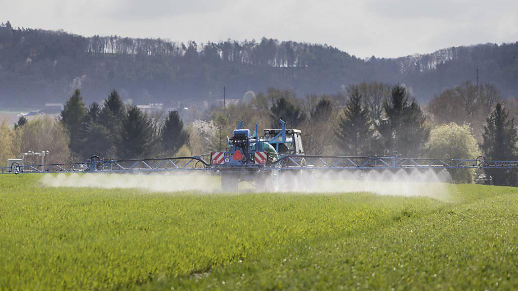 Das Bundesverwaltungsgericht hat die Zulassung für über ein Dutzend Pestizide aufgehoben. (Symbolfoto)