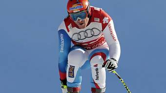 Didier Cuche in Topform