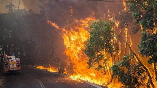 Australische Feuerwehrleute kämpfen gegen die Flammen (Archiv)