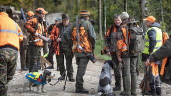 Für Jäger gibt es Kleidung in leuchtenden Farben – für Jagdhunde bissfeste Sicherheitswesten.