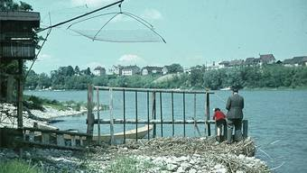 Früher waren die Salmenwaagen wie hier in Birsfelden (undatierte Aufnahme) voll mit Lachsen. So könnte es wieder sein – doch es gibt Probleme.
