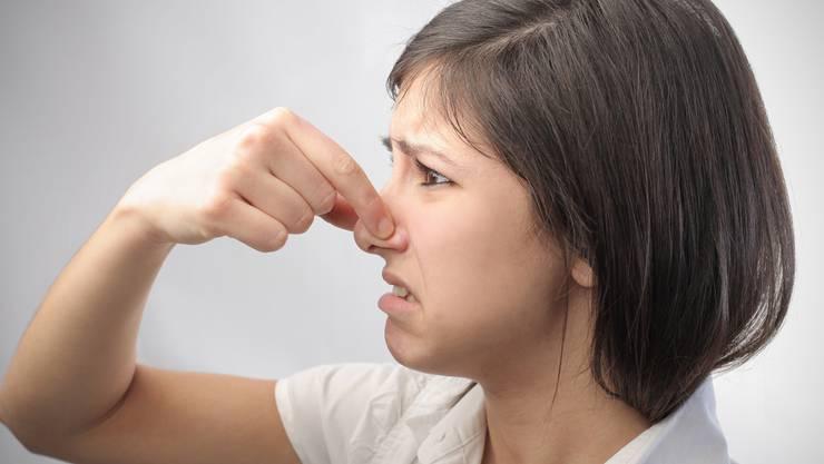 Wenns stinkt, hält sich frau dieNase zu. So schlimm riecht es in Hallwil aber nicht. Olly-Fotolia