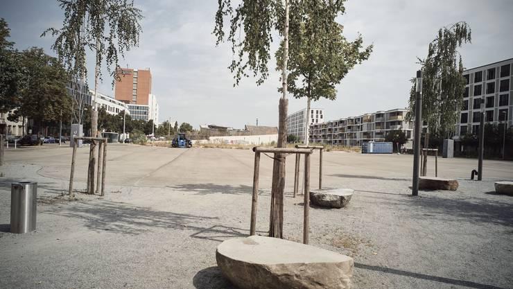 Es ist nur eines von gleich mehreren Grossprojekten des Kantons Basel-Stadt, das still steht: das «Stadtterminal» im Erlenmatt-Quartier.