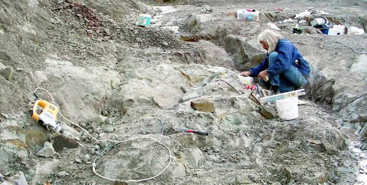 Plateosaurierfund Frick, Grabungsleiter Ben Pabst, Tongrube Gruhalde Frick