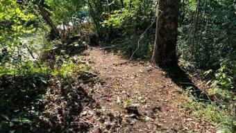 Über diesen Waldweg in Metzerlen-Mariastein spannten Unbekannte mehrere Drähte.