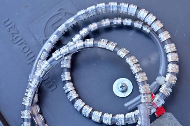 Die Aluminiumringe sind mit einer Nummer versehen, mit welcher später bestimmt werden kann, wo die Vögel beringt wurden.
