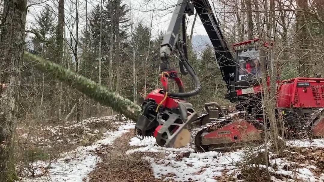 Schwere Maschinen sind im Wald der Bürgergemeinde Grenchen am Werk