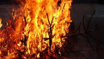 Das Weihnachtsbaum-Verbrennen ist umstritten. (Symbolbild)
