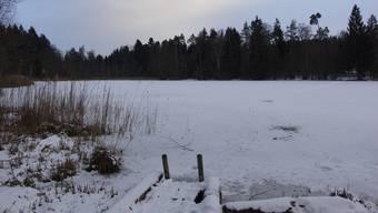 Das Fischbacher Mösli im Freiämter Reusstal ist zugefroren – der Gemeinderat gibt die Eisfläche nicht frei, dennoch zeigen Fussspuren, dass sich Leute aufs Eis wagen.