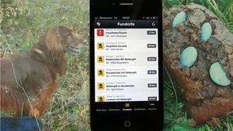 Die Giftköder-App auf dem Smartphone zeigt an, wann und wo verdächtige Funde aufgetaucht sind (rechts) und wo Hundehalter ihre Vierbeiner auf dem Spaziergang besonders gut im Auge behalten müssen. – Foto: chr