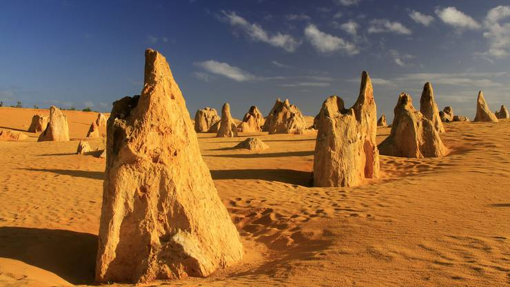 Die Kalksteinsäulen im Nambung National Park bei Perth sehen aus wie Skulpturen