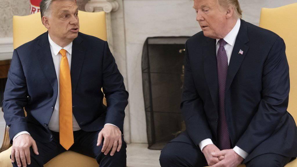 US-Präsident Donald Trump (r.) und Ungarns Ministerpräsident Viktor Orban am Montag im Weissen Haus in Washington.
