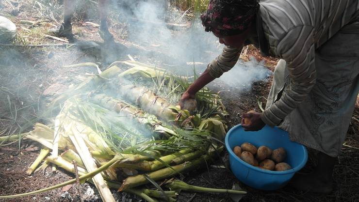 """Das traditionelle """"Mumu"""" – Niederdampfgaren im Erdloch…"""