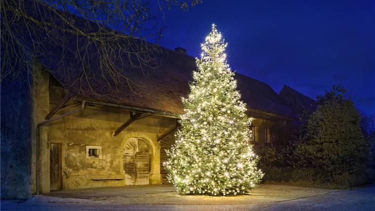 Der Weihnachtsbaum auf dem Linner Dorfplatz soll die Leute zu einem Spaziergang motivieren.