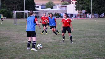 Die Frauen des FC Bremgarten wagen den Schritt und spielen in der neuen Saison in der 1. Liga.