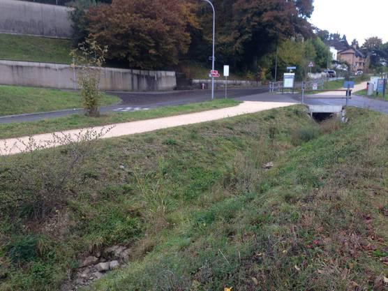 Die Wasserstation liegt zwischen Irchel-Campus und dem Waldrand.