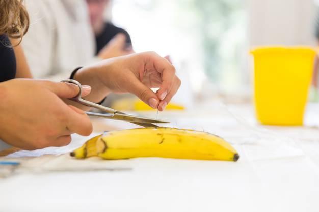 Medizinstudenten der ETH Zürich üben am Kantonsspital Baden in Kleingruppen an Bananen, wie Wunden richtig genäht werden. Aufgenommen am 20. September 2017.