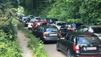 Mit dem Auto in den Wald: Beim Reitplatz in Winterthur kam es in der Vergangenheit immer wieder zu Verkehrskollapsen, die von der Polizei entwirrt werden mussten. Nun gilt Parkierverbot.