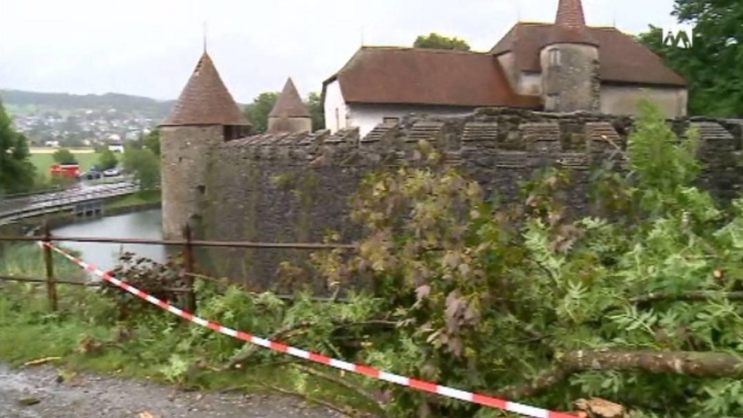 Park von Schloss Hallwyl durch Unwetter verwüstet