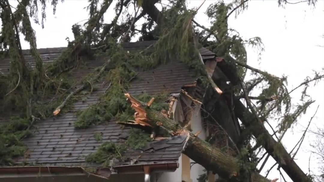 Schäden durch Sturmtief Sabine in Neuenburg